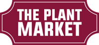 plantmarket